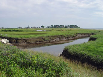 Kennebunk Beach Marshes