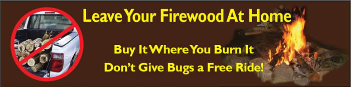 Infographic stating: Leave Your Firewood At Home. Buy It Where You Burn It. Don't Give Bugs a Free Ride!