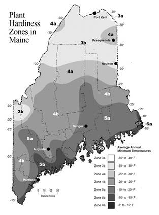 Maine Plant Hardiness Zones.  Used by permission Meteorological Evaluation Services Co., Inc and University of Maine Cooperative Extension
