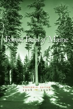 Forest Trees Maine Handbooks Amp Guides Publications