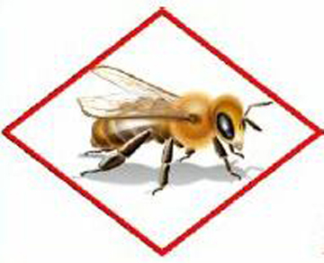 Image of honey bee from Protection of Pollinators notice.