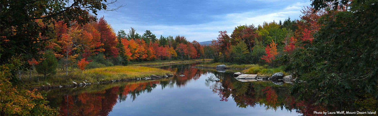 Welcome To Maine S Official Fall Foliage Website
