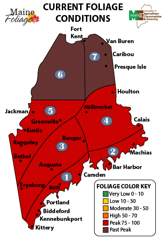 Us Leaf Color Map Fall Foliage Prediction Map When Leaves - Us fall color map