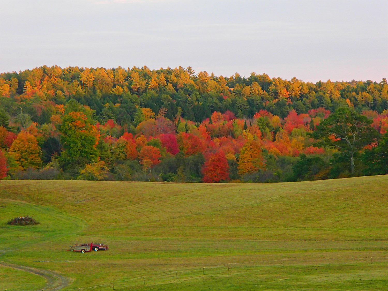 Mainefoliage Com Photo Gallery The Best Of The Years Past