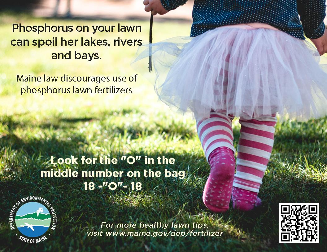 Use Phosphorus-Free Fertilizer to Keep Lawns Green, Waters
