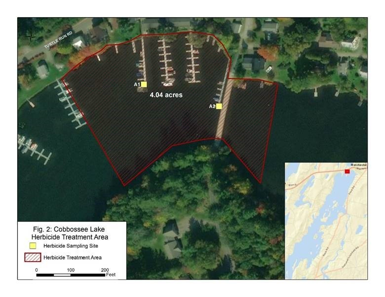 Herbicide Treatment Scheduled for Monday on Cobbosseecontee Lake