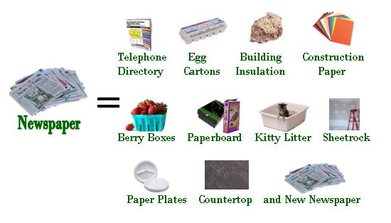 What Your Recyclables Become