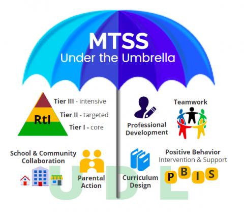 MTSS Under the Umbrella