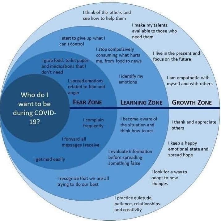 Zones of COVID (Fear, Learning & Growth)