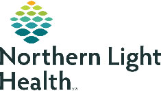 This is the Northern Light Healthcare icon