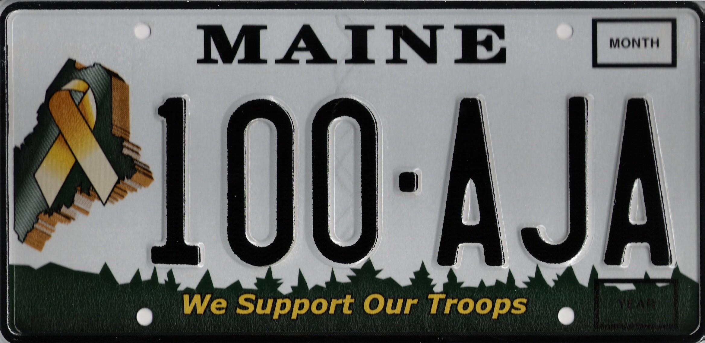 Image of the  Support Our Troops Plate