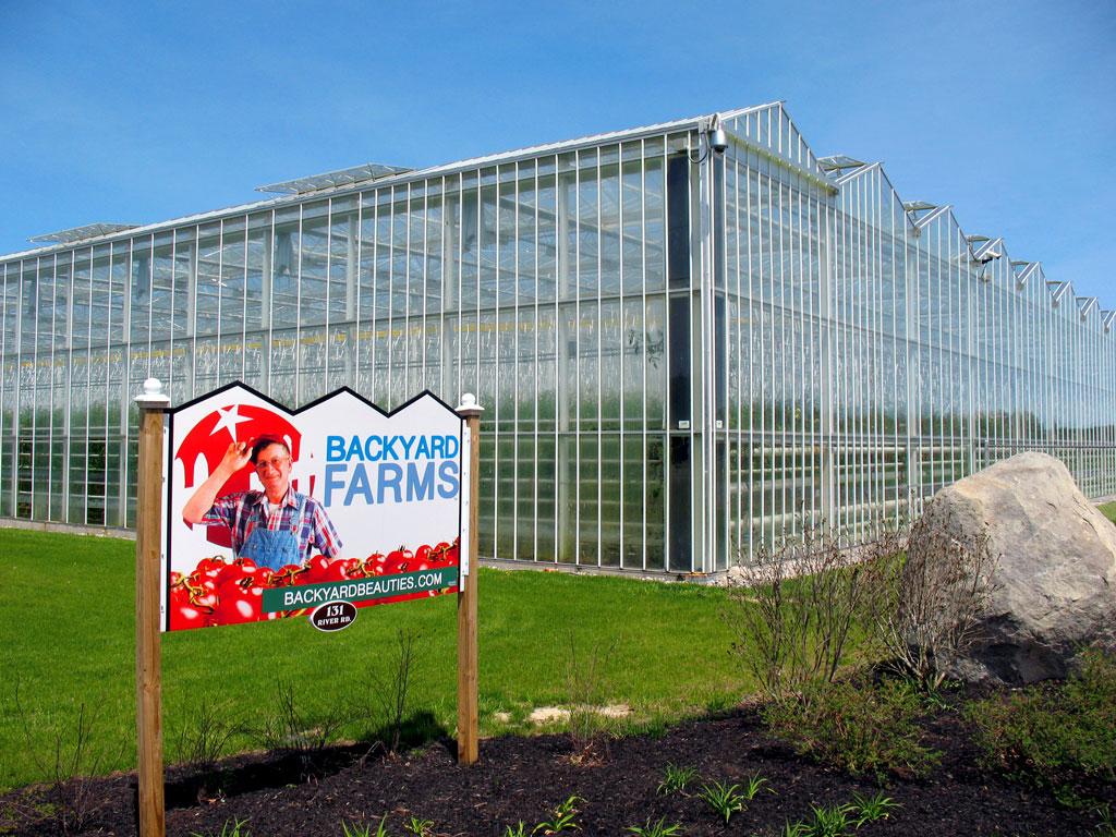Backyard Farms Greenhouse - Madison