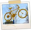 Bike Shop- Skowhegan