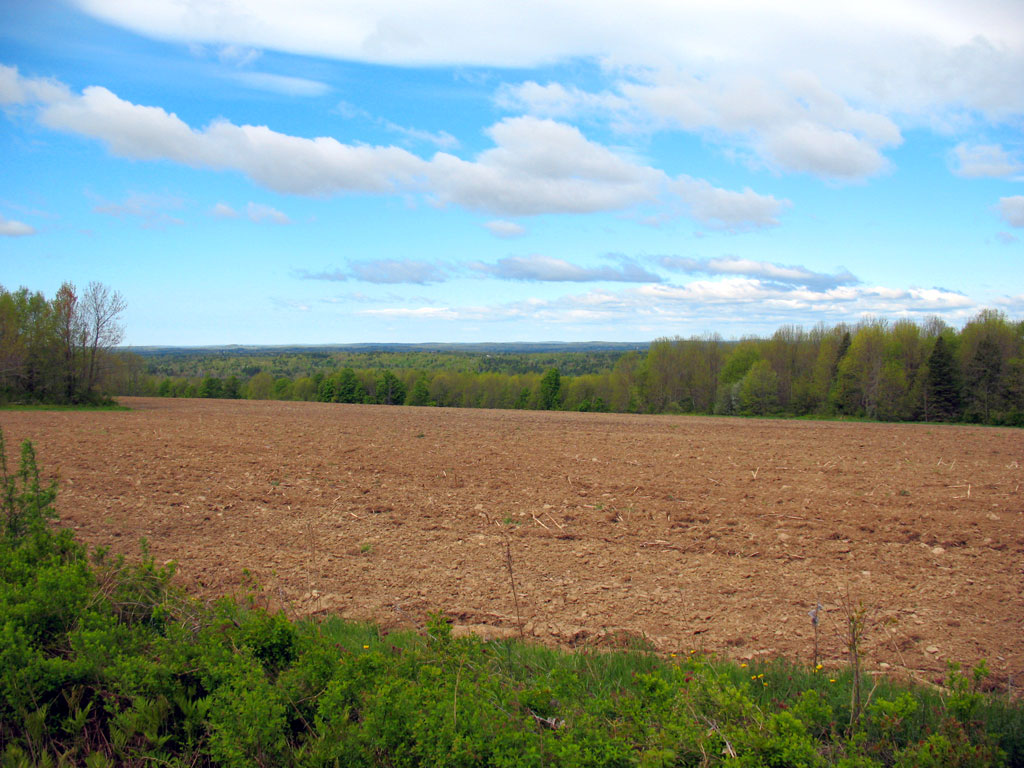 View from Parmenter Hill Rd