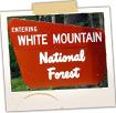 Entering White Mountains