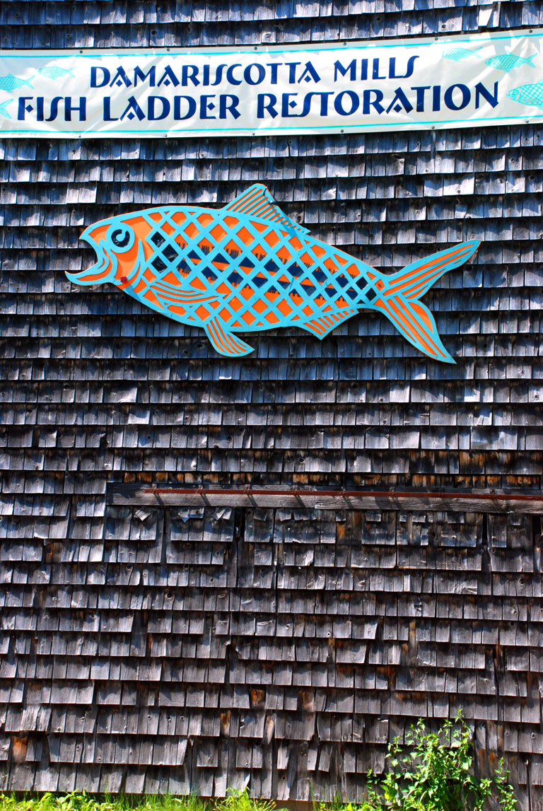 Fish Ladder - Damarscotta Mills