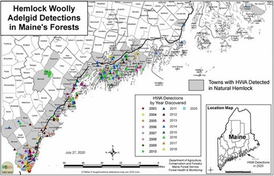 Map of HWA Detections in Maine