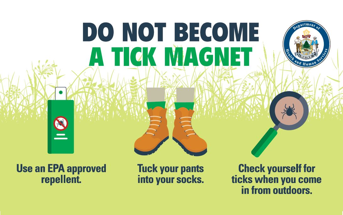 Do Not Become a Tick Magnet