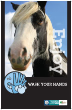 Wash Your Hands - Horse