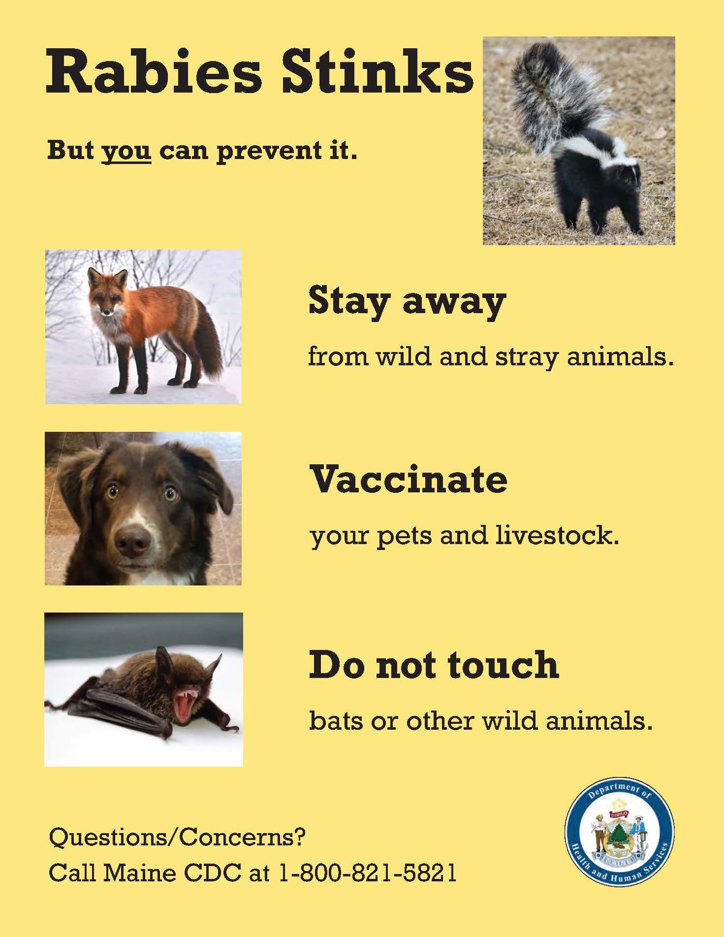 Rabies Stinks Poster