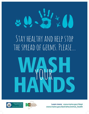 Handwashing Handprint Poster - Large