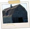 Old Barn - Grand Isle