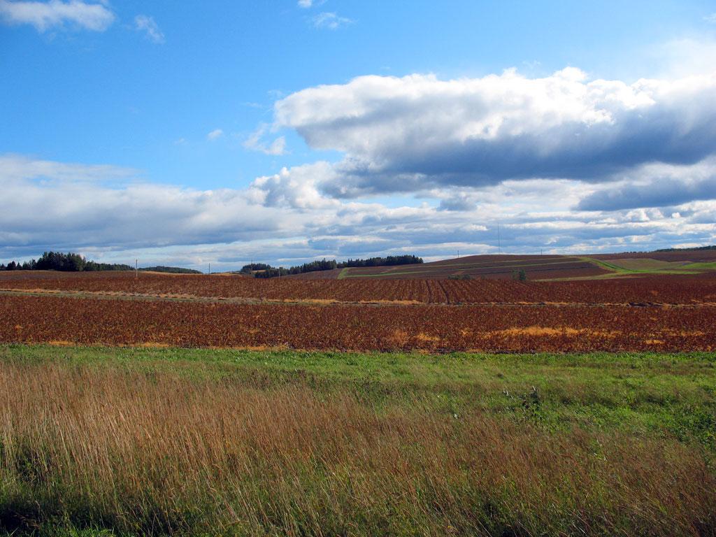 St. John Valley Farmlands