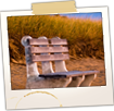Bench on Beach at Bay View - Saco