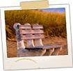 Bench on Beach at Bay View - Saco