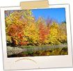 Fall Foliage on the Saco River
