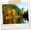 Saco River Foliage