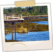 Low Tide - Deer Isle
