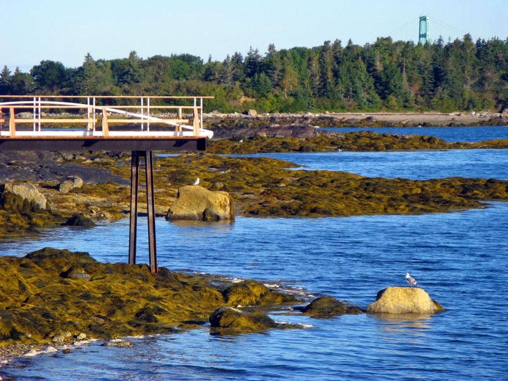 Low Tide - Deer Isle