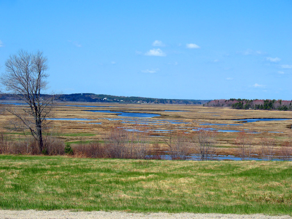 Marsh View from Black Point Rd
